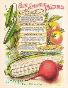 vintage-vegetables-996390_960_720